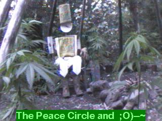 Click any pic to go back to the Peace Camp ;O)--~